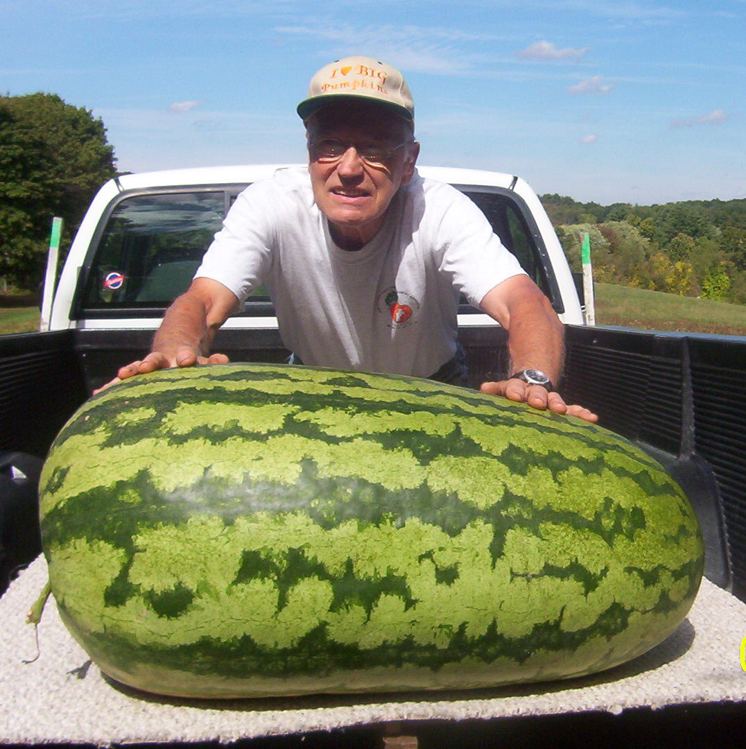 2010-john-converse-watermelon-record