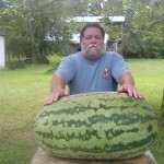 Giant Watermelon Picture - 131-webb-2010