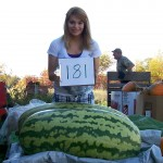 Giant Watermelon Picture - 181 Berry-2011